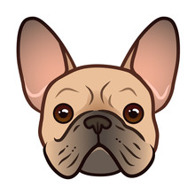 French Bulldog Face Vector Cartoon Illustration. Cute Friendly Fat Chubby Fawn Bulldog Puppy Face. Pets, Dog Lovers, Animal Themed Design Element Isolated On White.