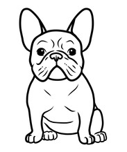 French Bulldog Black And White...