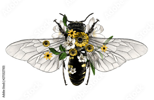 bee with open wings top view decorated with flowers and leaves symmetrically, sk Canvas Print