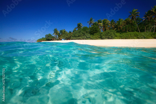 Wall Murals Green coral Tropical Island with a paradise beach and palm trees