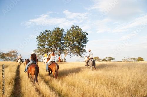 Fototapeta Visual perspective of a Llanero (Colombian Cowboy) obraz