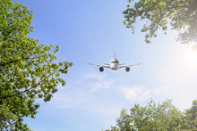 Airliner In The Sky Between The Green Foliage. The Sun Shines.