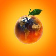 Fresh Ripe Orange Fruit With World Map Image Source From NASA