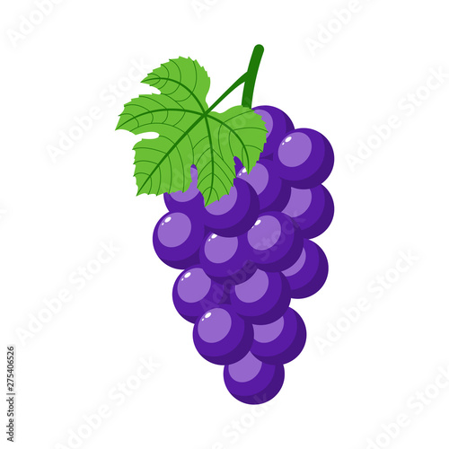 Purple grapes isolated on white background Fototapeta