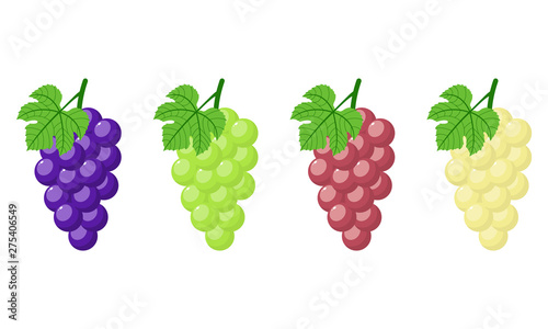 Fotografia Set of different grapes isolated on white background