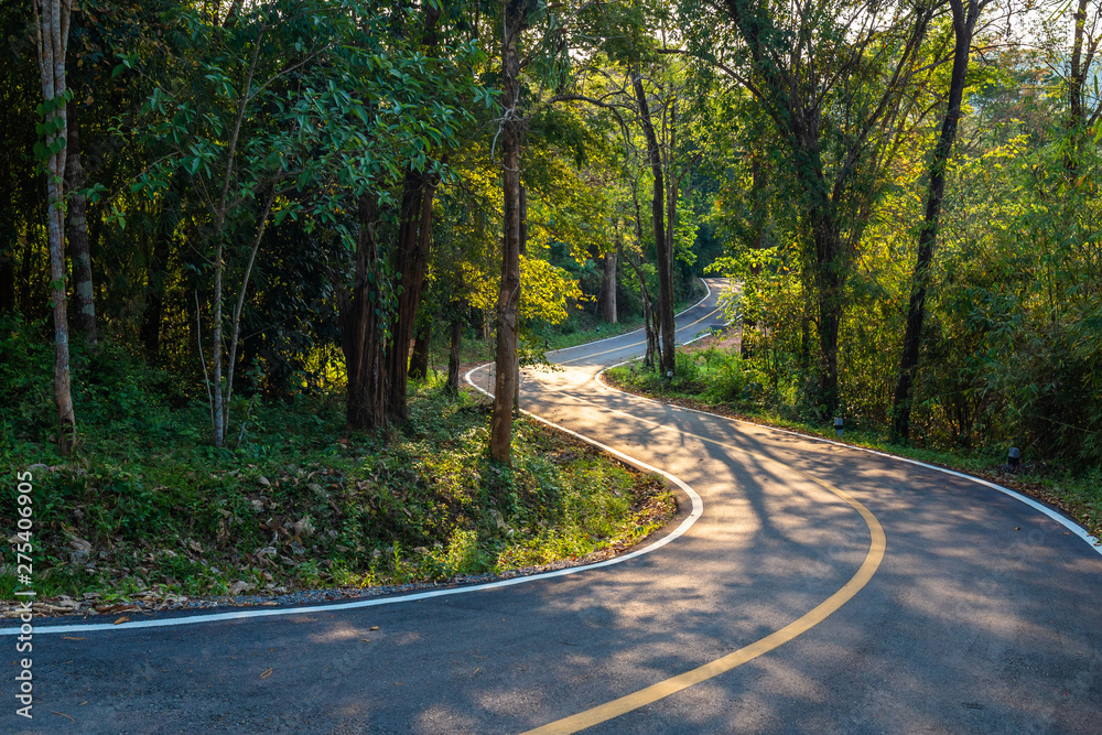 Fototapeta Road in the Forest, Thung Salaeng Luang National Park, Thailand