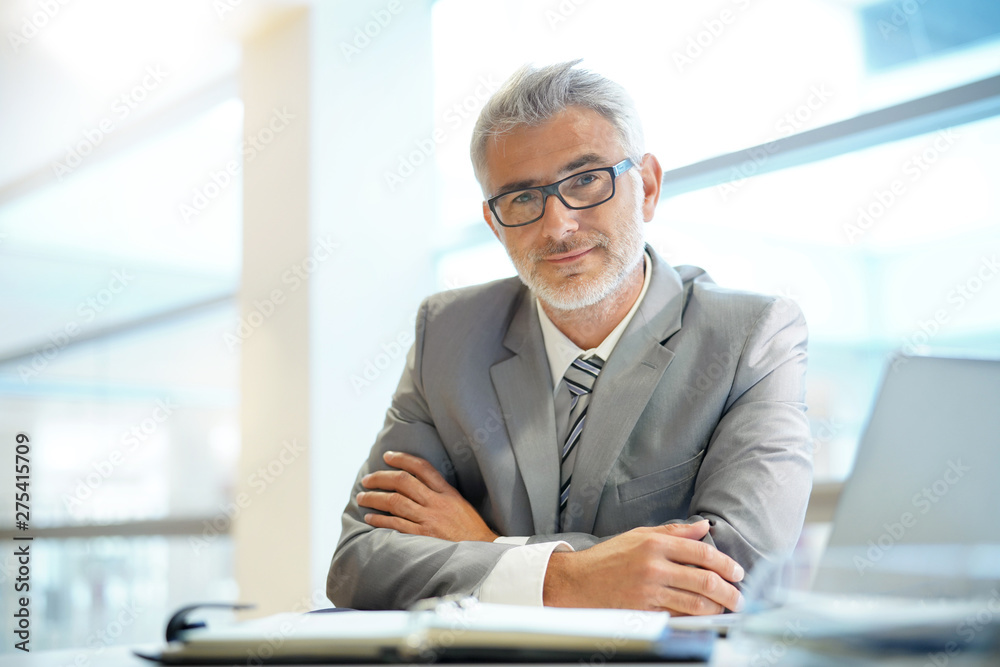 Fototapeta Portrait of mature businessman sitting in office looking at camera