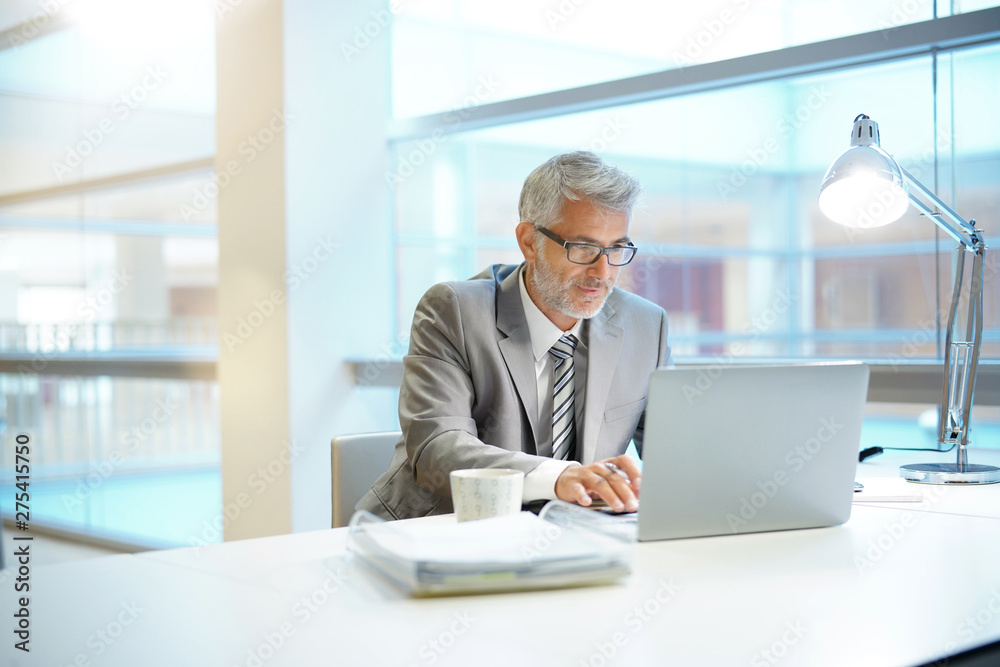 Fototapety, obrazy: Mature businessman working in contemporary office