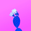 canvas print picture - Fashion Cactus with flower in Trendy Pink Color, Minimal Style. Fun Summer Sweet Mood.