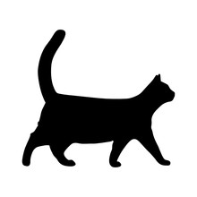 Vector Flat Style Silhouette Illustration Of A Realistic Black Cat Walking - Isolated On White Background. Full Editable And Scalable High Quality Eps File Available.
