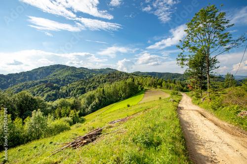 Spoed Foto op Canvas Weg in bos Beskid Sądecki - Góry Karpaty