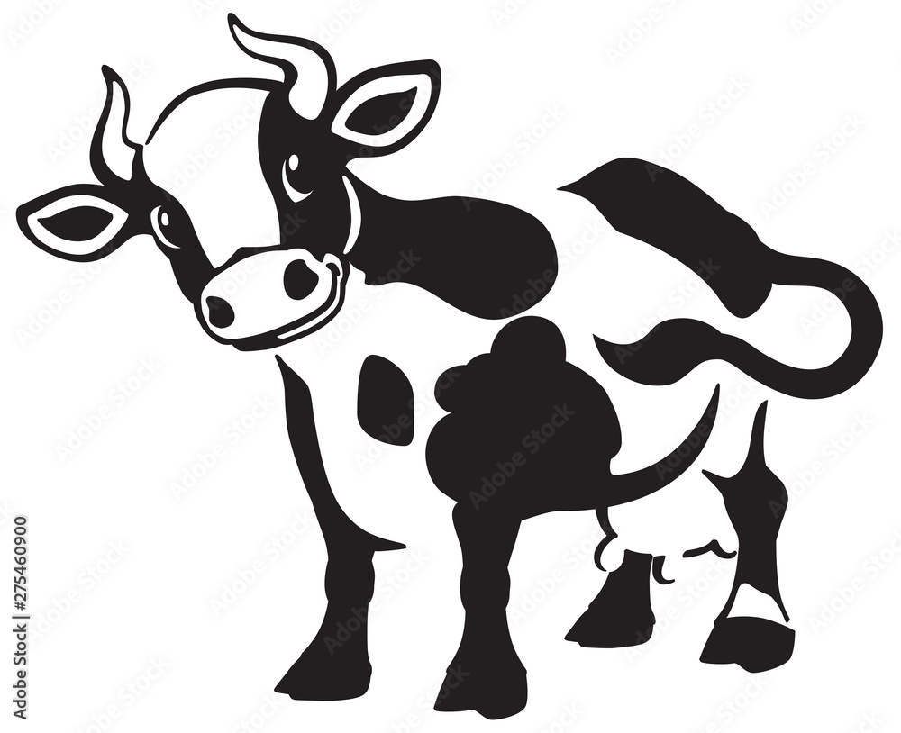 Fototapeta cartoon spotted cow . Black and white icon, logo , emblem . Isolated vector illustration