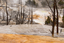 Beautiful Landscape Of Mammoth Hot Spring, Yellowstone National Park