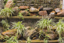 Cascading Water Feature Wall With Shelves Of Variegated Spider Plants.
