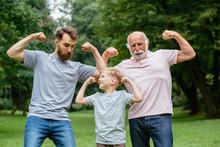 Portrait Og Happy Family - Gra...
