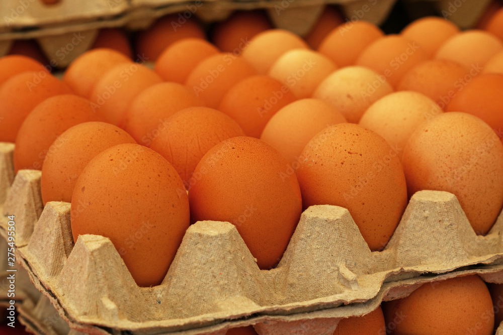 Fototapety, obrazy: Close up brown chicken eggs in tray carton