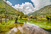 Morin In Boka Kotorska Bay. Montenegro