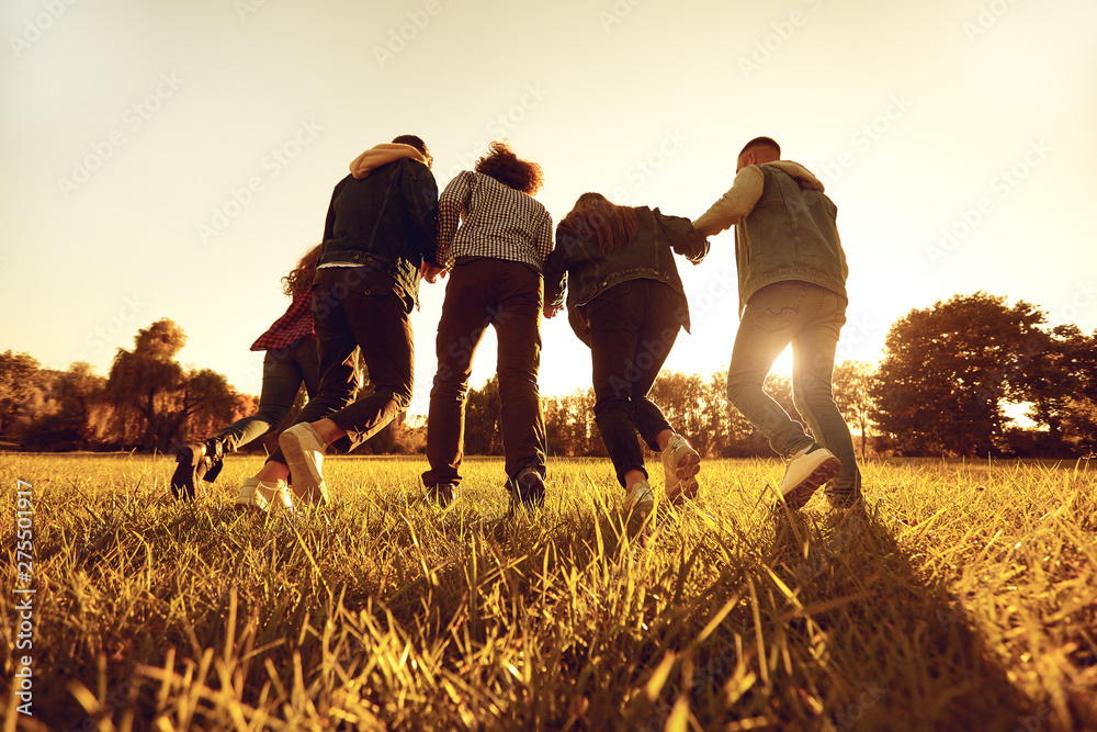 Fototapety, obrazy: Running friends in golden sunny field