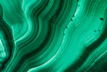 The Green Malachite. An Orname...