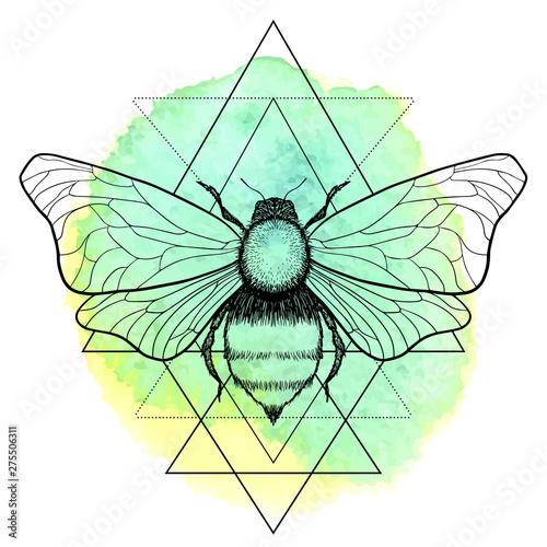 Tablou Canvas Beautiful hand drawn honey bee queen insect on geometrical sign
