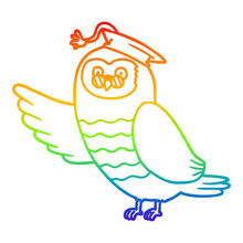 Rainbow Gradient Line Drawing Cartoon Owl Graduate