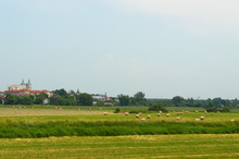 Field With Bales Of Hay With Old Polish Town In The Background
