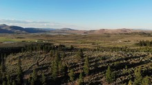 Pan Of North Valleys And Cold Springs Nevada - Toiyabe Forest Aerial Drone.