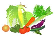 色々な野菜の盛り合わ...