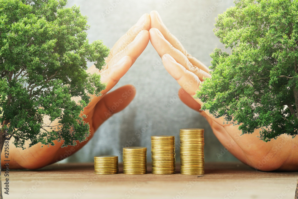 Fototapety, obrazy: businessman protection money on table with tree. concept saving