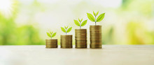 Money Stack With Plant Growing. Finance And Accounting Concept