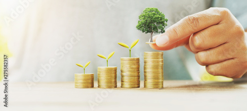 businessman putting money stack with tree growing on table concept saving financ Fototapete