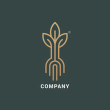 Abstract Sprout With Roots Logo Icon Vector Design. Elegant Plant Premium Symbol.