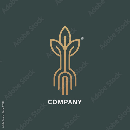 Canvas Abstract Sprout with Roots logo icon vector design