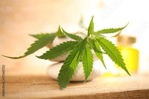 Photo  cbd oil bottle and hemp leaf