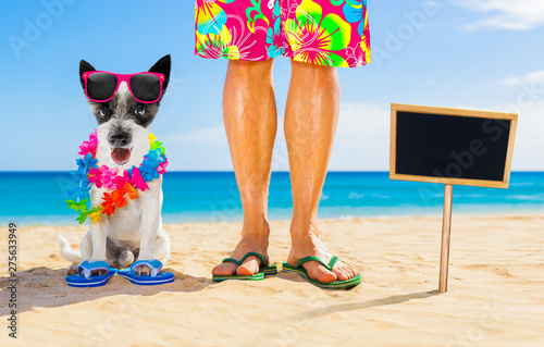 Foto op Aluminium Crazy dog dog and owner summer holidays