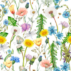 Panel Szklany Ogrody Hand drawn botanical seamless pattern of garden wildflowers,plants