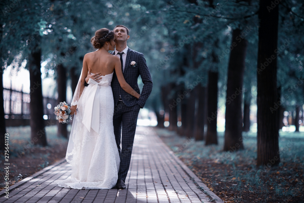 Fototapety, obrazy: Wedding, the bride and groom on the wedding day photosession