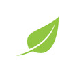 Green leaf ecology nature element vector icon.