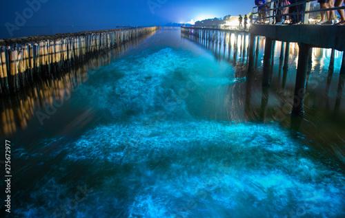 Photo Bioluminescence in night blue sea water