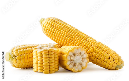obraz PCV Ripe corn and pieces on a white background. Isolated