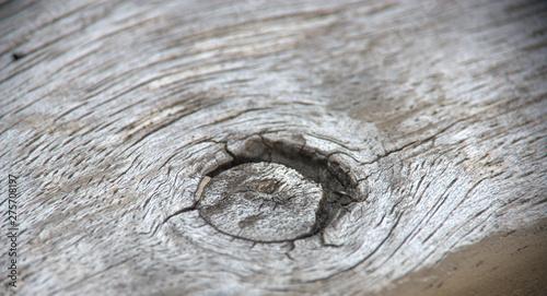 Fototapeta  noeud dans du bois en gros plan