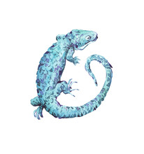 Lizard Watercolor Illustration Hand Painted