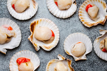 Raw Fresh Uncooked Scallops