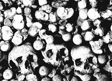 Skull And Bone Art Background