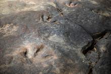 Dinosaur Footprints Amphoe Na ...