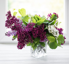 Bunch Lilac In Vase
