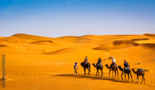 Fotobehang Kameel Camel caravan going through the sand dunes in beautiful Sahara Desert. Amazing view nature of Africa. Artistic picture. Beauty world.