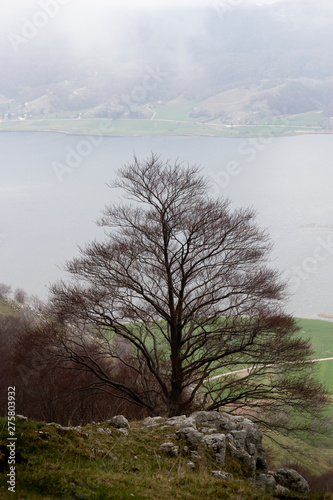 Poster Afrique winter mountain trees in matese park