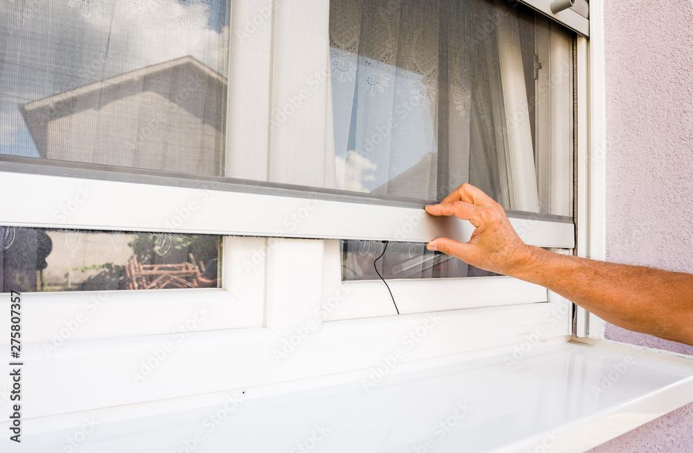 Fototapety, obrazy: hand holds anti-insect mosquito net on pvc windows