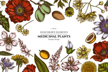 Floral Design With Colored Almond, Dandelion, Ginger, Poppy Flower, Passion Flower, Tilia Cordata